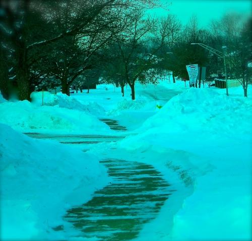 snowysidwalk